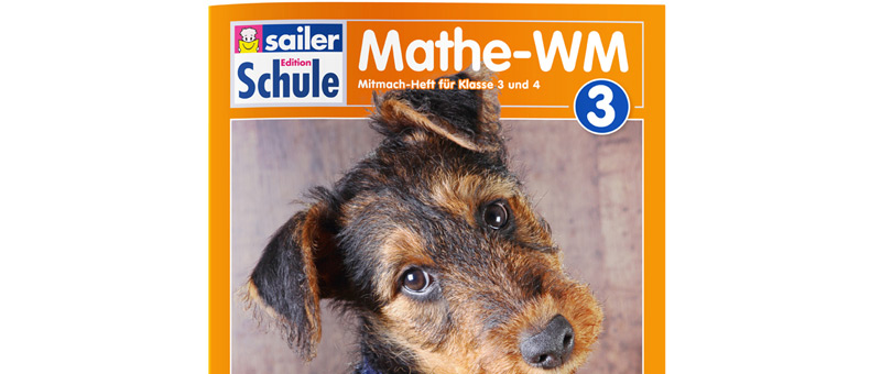 Mathe WM