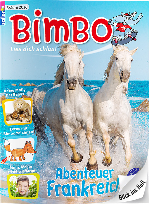 BIMBO Cover