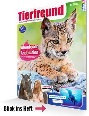 Tierfreund Kinderzeitschrift