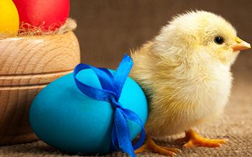 Ei und Osterei