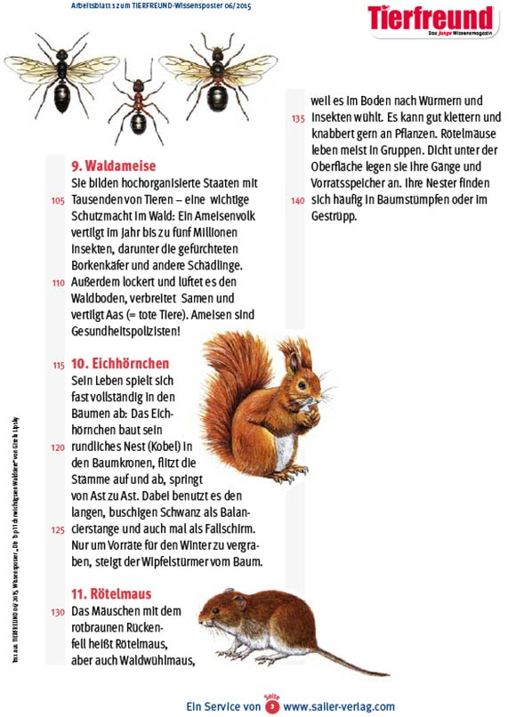 Arbeitsblätter über Waldtiere 3