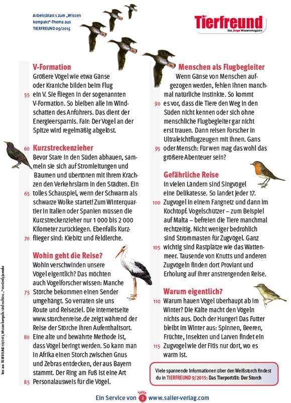 Arbeitsblätter über Zugvögel 2