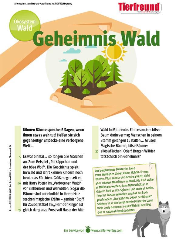 Arbeitsblätter Lebensraum Wald 1
