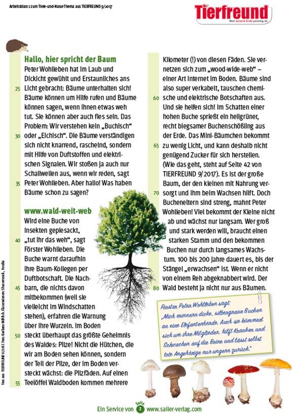 Arbeitsblätter Lebensraum Wald 2