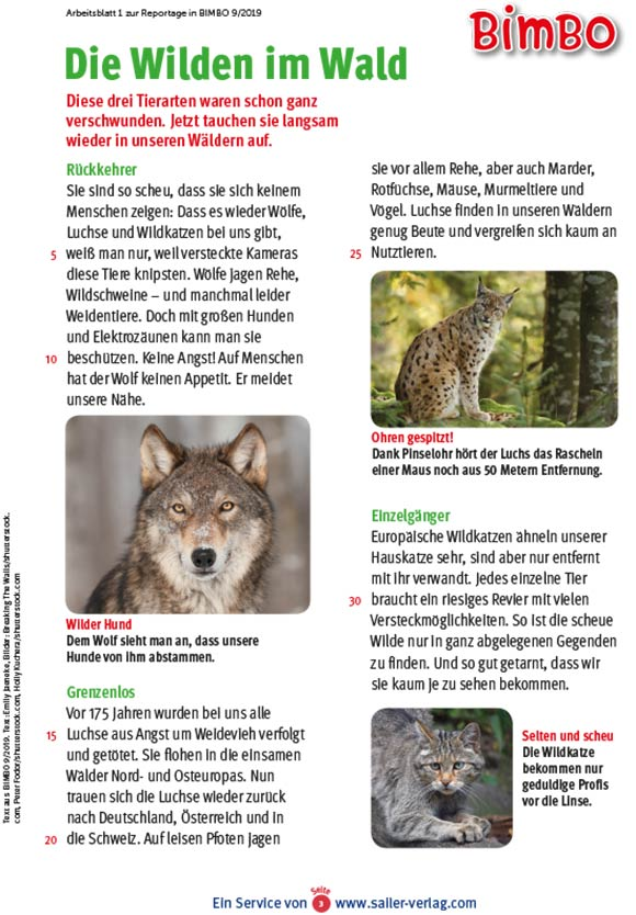 Arbeitsblätter Wohnen im Wald 3