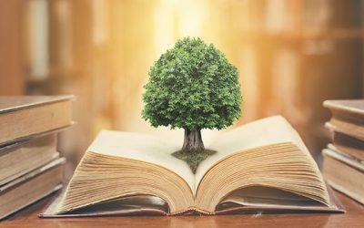 Nachhaltig lesen