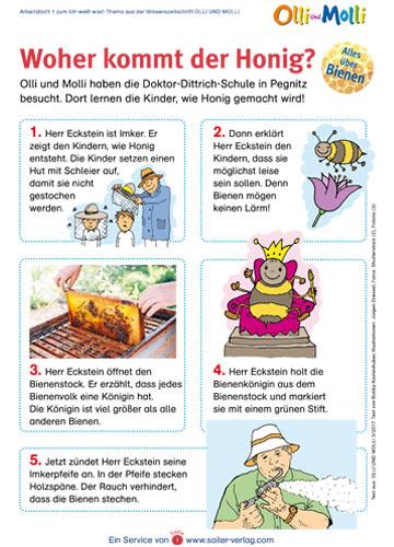 Arbeitsblatt Honig