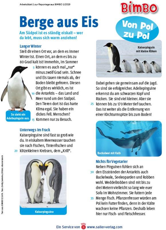 Arbeitsblätter Arktis und Antarktis-1