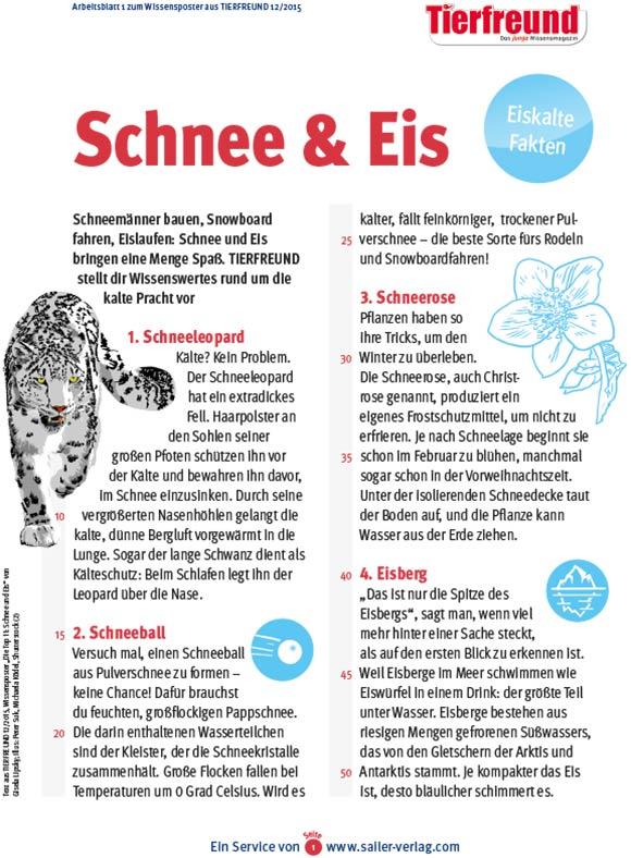Arbeitsblätter Fakten über Eis und Schnee-1