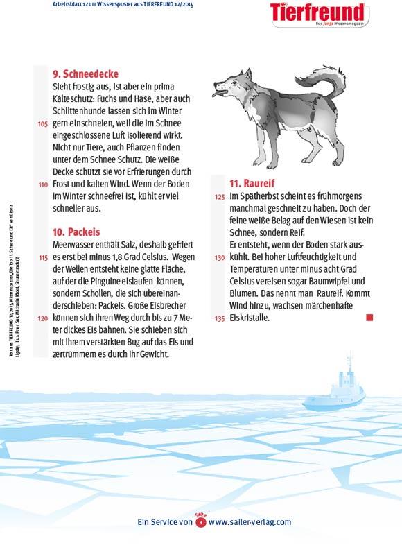 Arbeitsblätter Fakten über Eis und Schnee-3