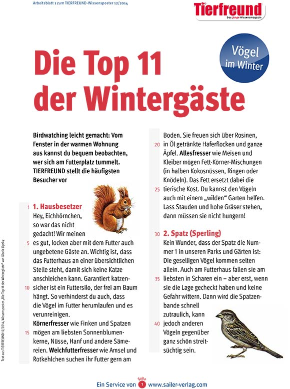 Arbeitsblatt Vögel im Winter-1
