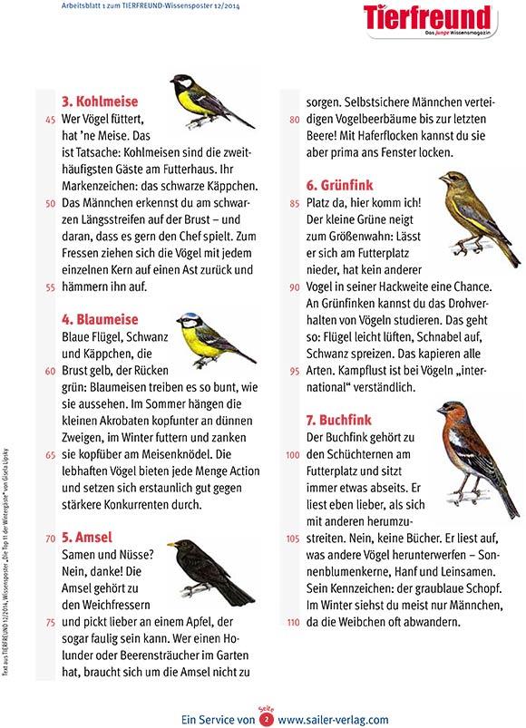 Arbeitsblatt Vögel im Winter-2
