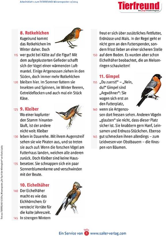 Arbeitsblatt Vögel im Winter-3