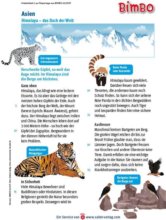 Arbeitsblätter Bergtiere im Winter-3