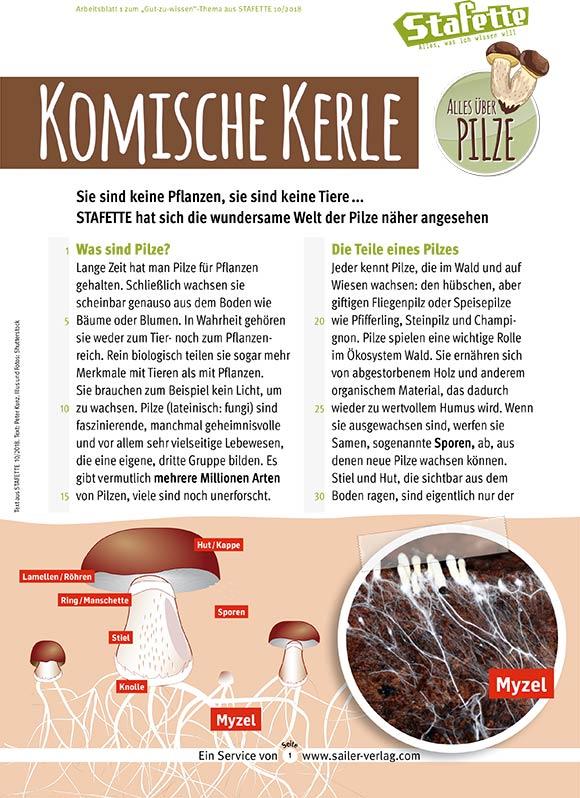 Arbeitsblätter Alles über Pilze-1