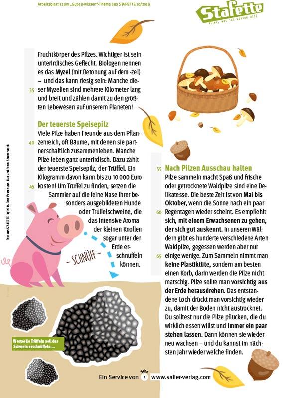 Arbeitsblätter Alles über Pilze-2