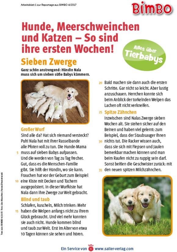 Arbeitsblätter Alles über Tierkinder-1