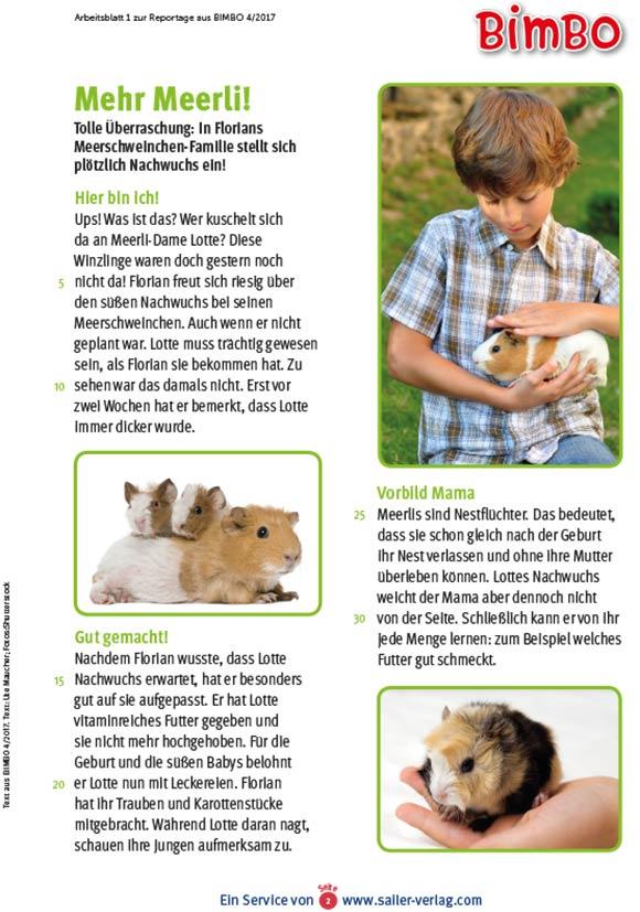 Arbeitsblätter Alles über Tierkinder-2
