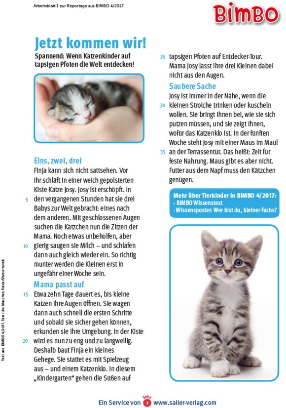 Arbeitsblätter Alles über Tierkinder-3