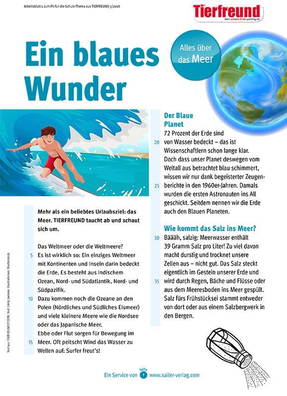 Arbeitsblätter Alles über das Meer-1