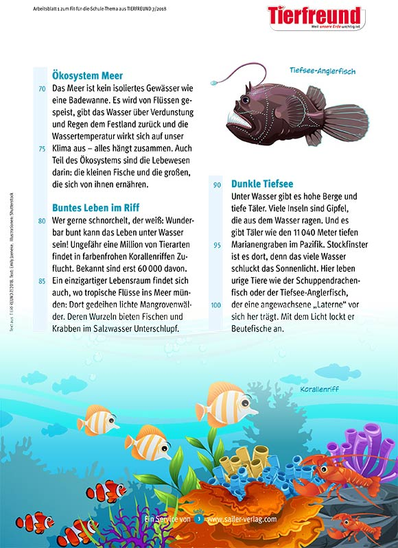 Arbeitsblätter Alles über das Meer-3