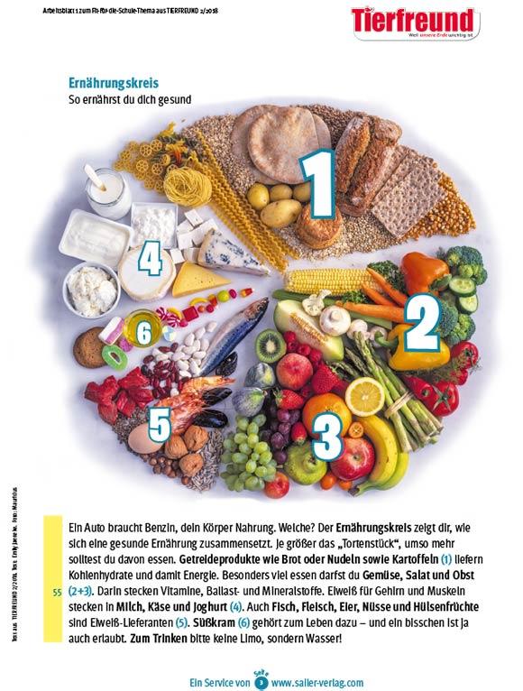 Arbeitsblätter Gesunde Ernährung-3