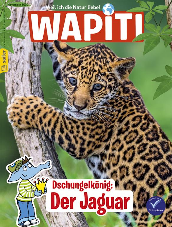 Wapiti_11_2020