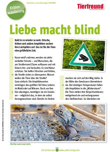 Arbeitsblatt Krötenwanderung