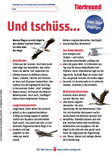 Arbeitsblatt Zugvögel